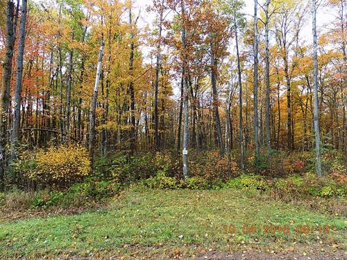 2+ Acre Building Lot North Oaks : Sandstone : Pine County : Minnesota