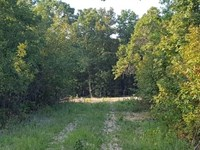 Land For Sale in The Ozarks : Thomasville : Oregon County : Missouri