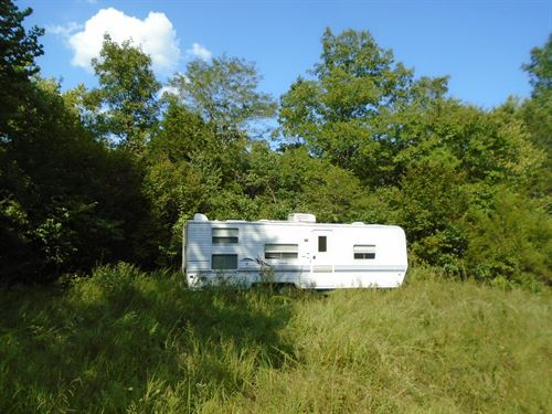 Missouri Hunting Property : Annapolis : Reynolds County : Missouri