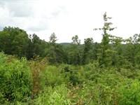Small Acreage For Sale in Ava, Mo : Ava : Douglas County : Missouri