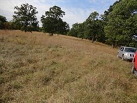 Great Commercial Land in Boss MO : Boss : Dent County : Missouri