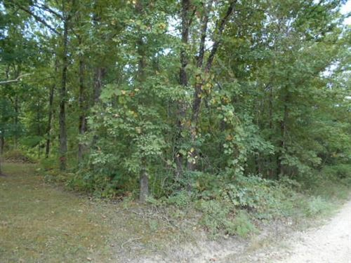 Land For Sale : Cabool : Texas County : Missouri