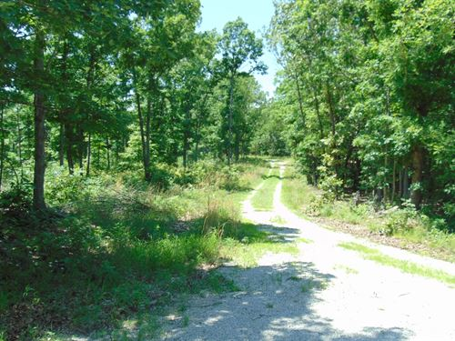 Recreation/Hunting Acreage South : Cabool : Texas County : Missouri