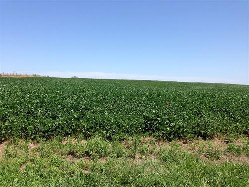 Nw MO High Producing Farm For Sale : Cameron : Caldwell County : Missouri