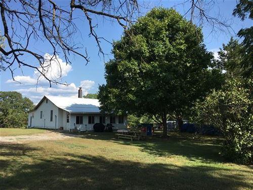 Southern Mo Hobby Farm Mtn, View : Birch Tree : Shannon County : Missouri