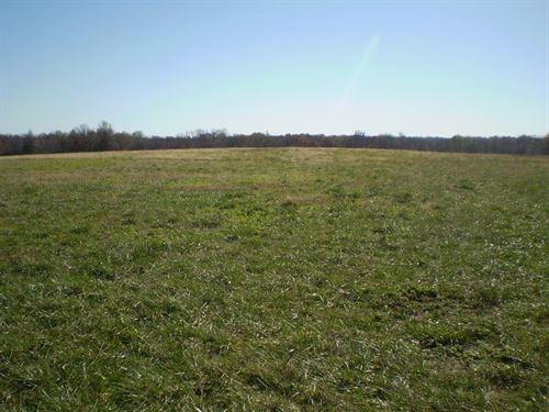 Hunting Land, Tillable Pasture : Blairstown : Johnson County : Missouri