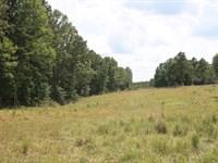 South East Missouri Land 608 Acres : Clubb : Wayne County : Missouri