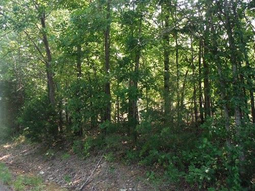 25 Acres M/L Southeast Missouri : Doniphan : Ripley County : Missouri