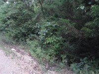 Lot For Sale : Doniphan : Ripley County : Missouri