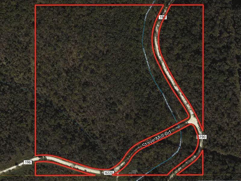 Wooded Acreage Near Rolla Missouri : Edgar Springs : Phelps County : Missouri