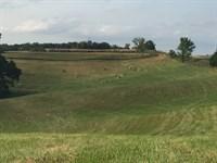 77 Acres Pasture Ground For Sale : Ethel : Macon County : Missouri