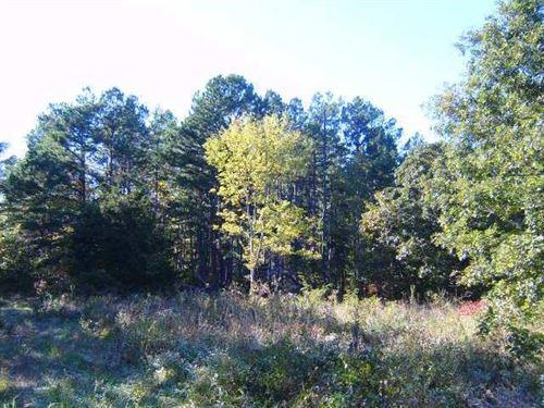 Land, 80 Acres, Hunting, Building : Hartshorn : Texas County : Missouri