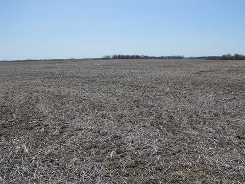 Mo Farmland, Flat/Black Row Crop : Baring : Knox County : Missouri