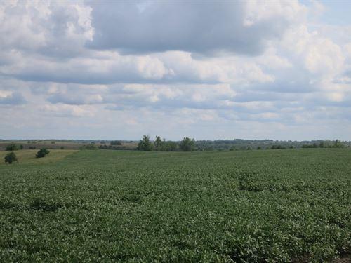 120 Acre Row Crop Farm Northwest : Hatfield : Harrison County : Missouri