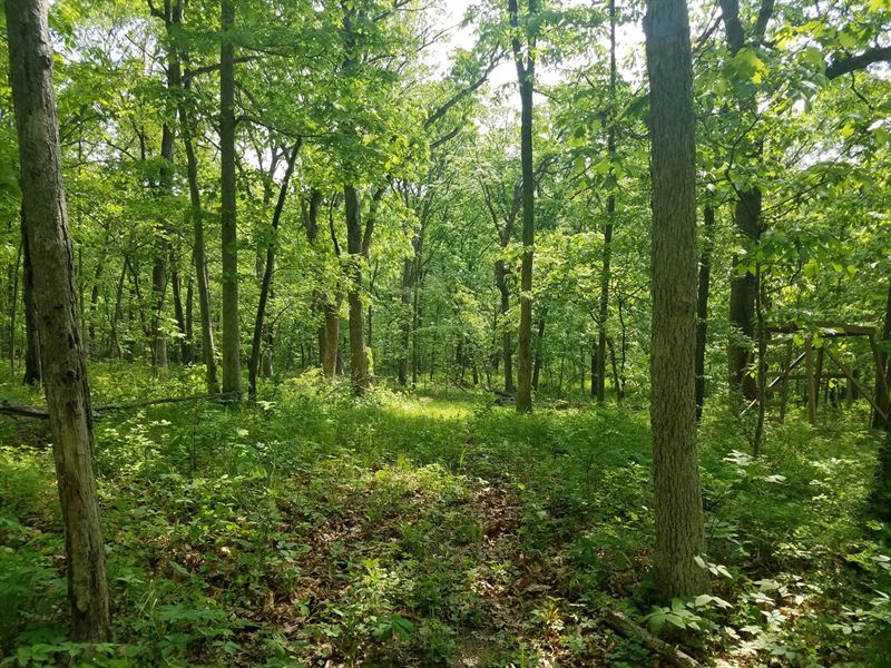 Hunting Land North MO Unionville : Lucerne : Putnam County : Missouri
