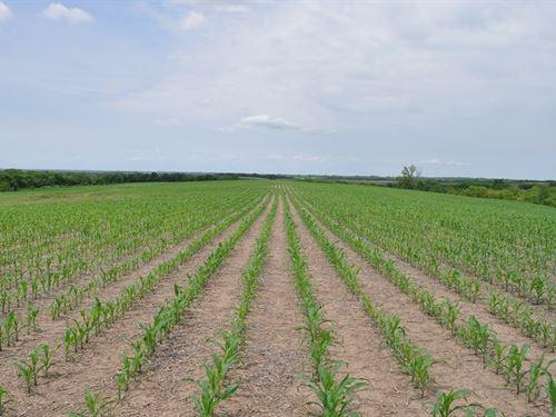 Gentry County Row Crop Farm, Great : McFall : Gentry County : Missouri