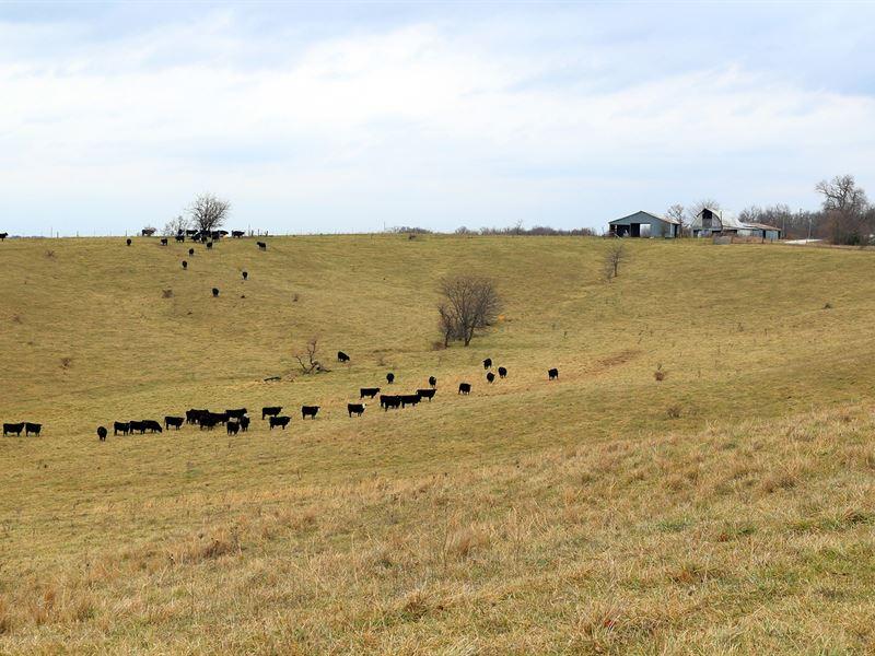 Pasture Farm Northeast Missouri : Novinger : Adair County : Missouri