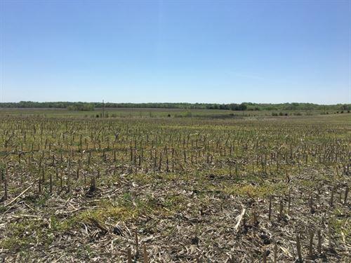 Farm, Highly Tillable Mostly Class : Pattonsburg : Daviess County : Missouri