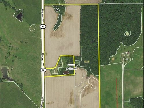 Easy Roi, 75 Total Acres, 45.24 Crp : Trenton : Livingston County : Missouri