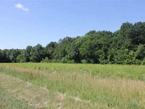 26 Acres For Sale Livingston County : Trenton : Livingston County : Missouri