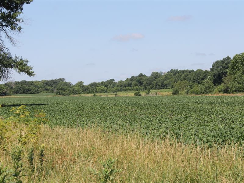 Livingston County Mo Acreage : Trenton : Livingston County : Missouri