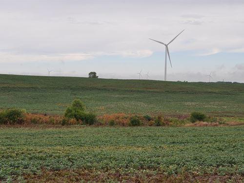 Highly Tillable 40Ac Sets Hwy : Maysville : Dekalb County : Missouri