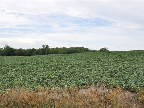 40 Ac, Great Building Site, Income : Maysville : Dekalb County : Missouri
