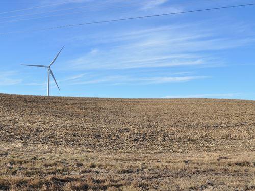 Highly Tillable Row Crop Farm : Maysville : Dekalb County : Missouri