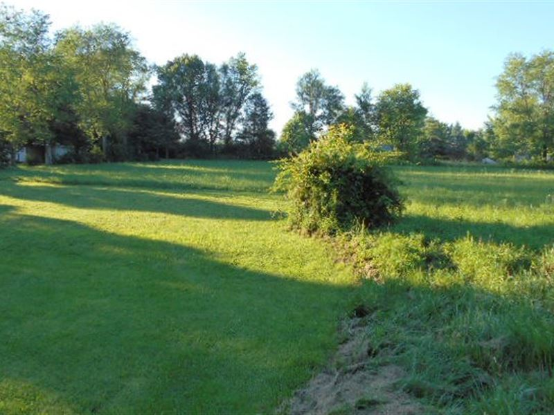 1.1 Acre Surveyed, Building Sites : Mountain View : Howell County : Missouri
