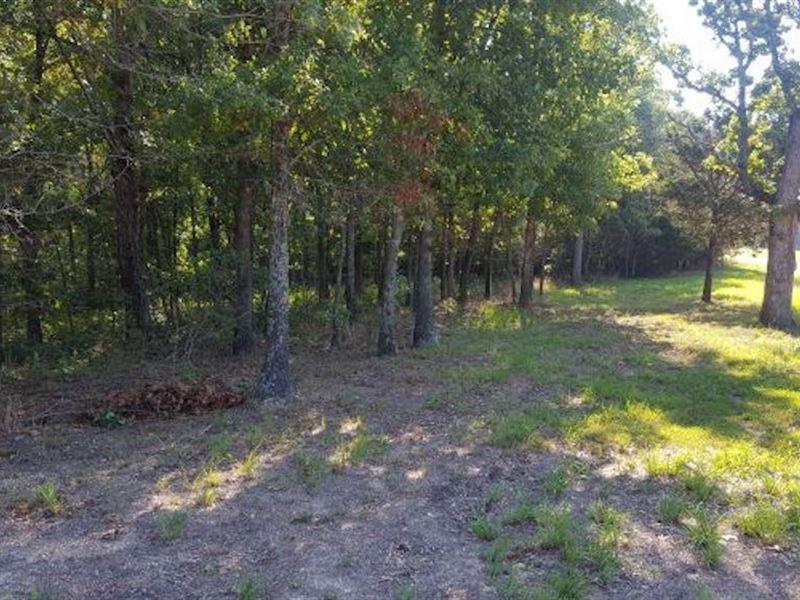 Land, Wooded Land, Building Sites : Norwood : Douglas County : Missouri