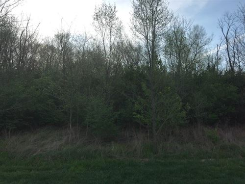 All Wooded Secluded Property : Salem : Dent County : Missouri