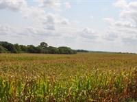 High Tillable 80 ac Farm Showing : Santa Rosa : Dekalb County : Missouri