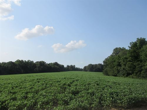 Farm For Sale in Scott County, MO : Scott City : Scott County : Missouri