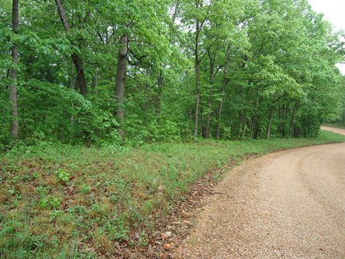 5 Acres Vacant Land Lake Ozarks : Stover : Morgan County : Missouri