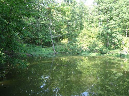 Lake Ozarks Lakefront Property, 4 : Stover : Morgan County : Missouri