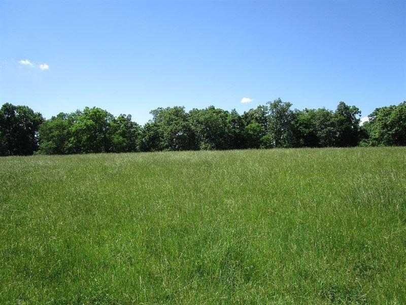 320 Acre M/L Farm, Farm House : Summersville : Shannon County : Missouri