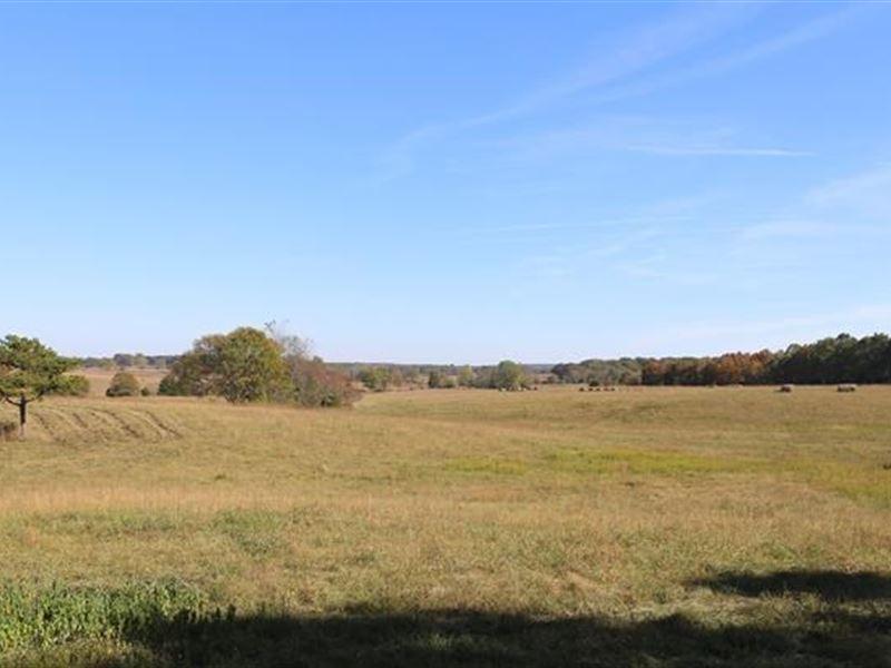 178 Acre Farm Texas Co, Missouri : Summersville : Texas County : Missouri
