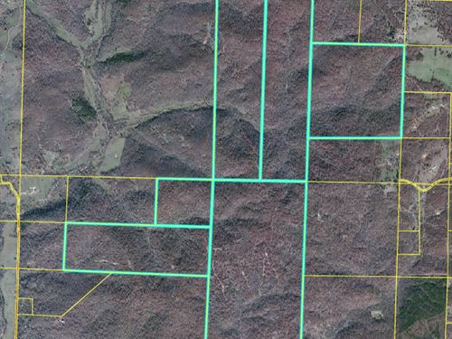 Land For Sale in Oregon County : Thayer : Oregon County : Missouri