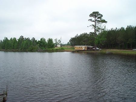 93 Acres With 6 Acre Lake & Camp : Wrightsville : Johnson County : Georgia