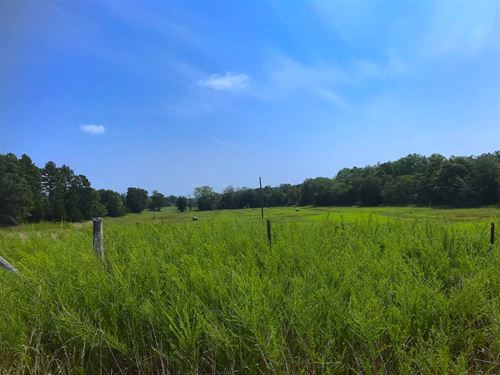 Farm For Sale in The Ozarks : Winona : Shannon County : Missouri