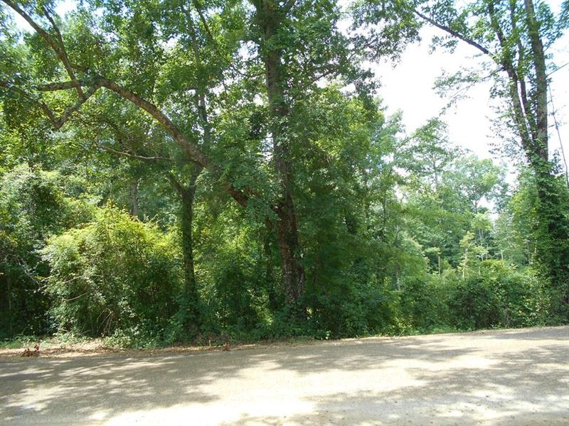 Land Lincoln County 93 Acres : Brookhaven : Lincoln County : Mississippi