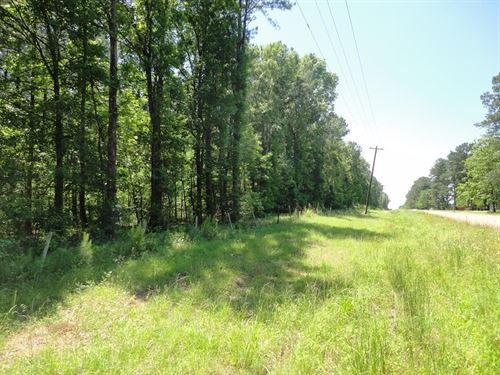 Land 11 Acres Scott County Forest : Forest : Scott County : Mississippi