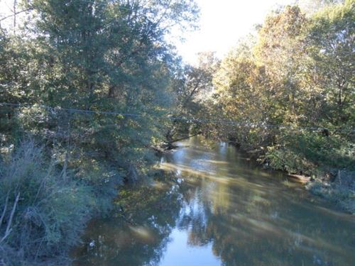 66 Acres Amite County MS Hunting : Liberty : Amite County : Mississippi