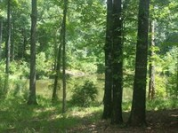 Land 106 Acres Hunting Land : Port Gibson : Claiborne County : Mississippi