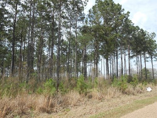 35 Acres Lincoln County West : Smithdale : Lincoln County : Mississippi