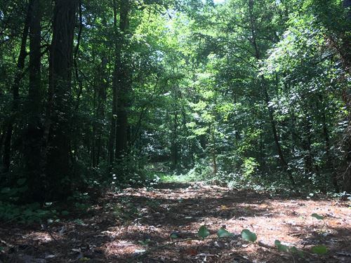 2.9 Acres in Clay County, MS : Starkville : Clay County : Mississippi