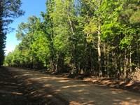 Land, McGee Rd, Starkville, MS : Starkville : Oktibbeha County : Mississippi