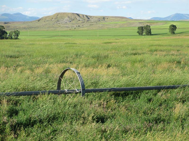 Park County, Montana Irrigated Land : Clyde Park : Park County : Montana