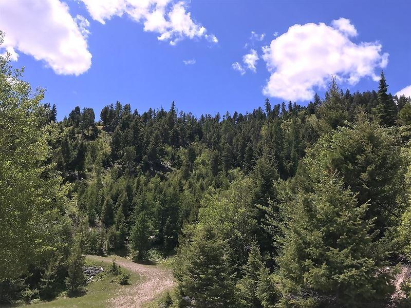 160 Acre Recreation Property : Drummond : Granite County : Montana