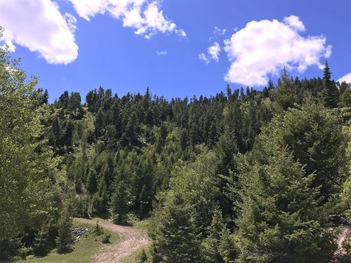 160 Acre Recreation Property : Drummond : Granite County : Montana
